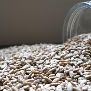 Zonnebloempitten-dehorecabox-noten-pitten-zaden-gezond